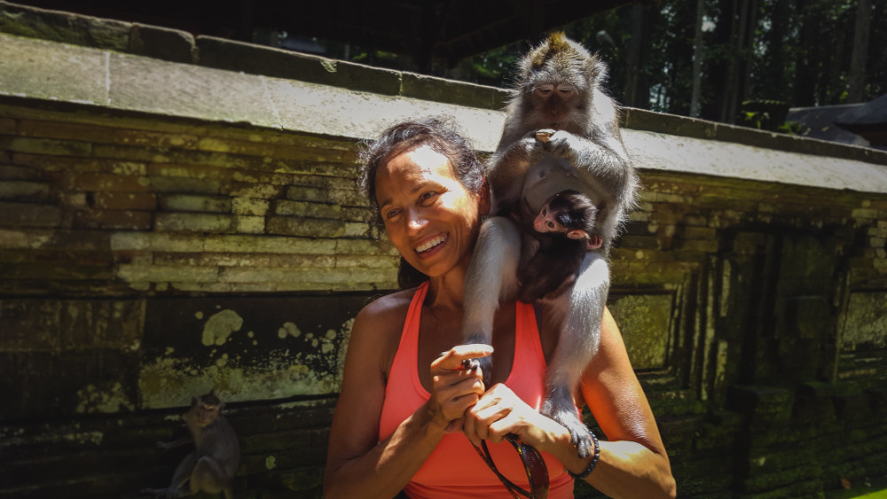 Sangeh Monkey Forest Tori Eldridge Author